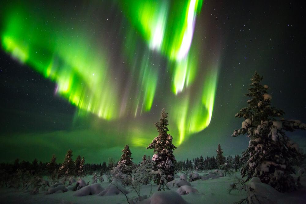 Zorza polarna w Laponii