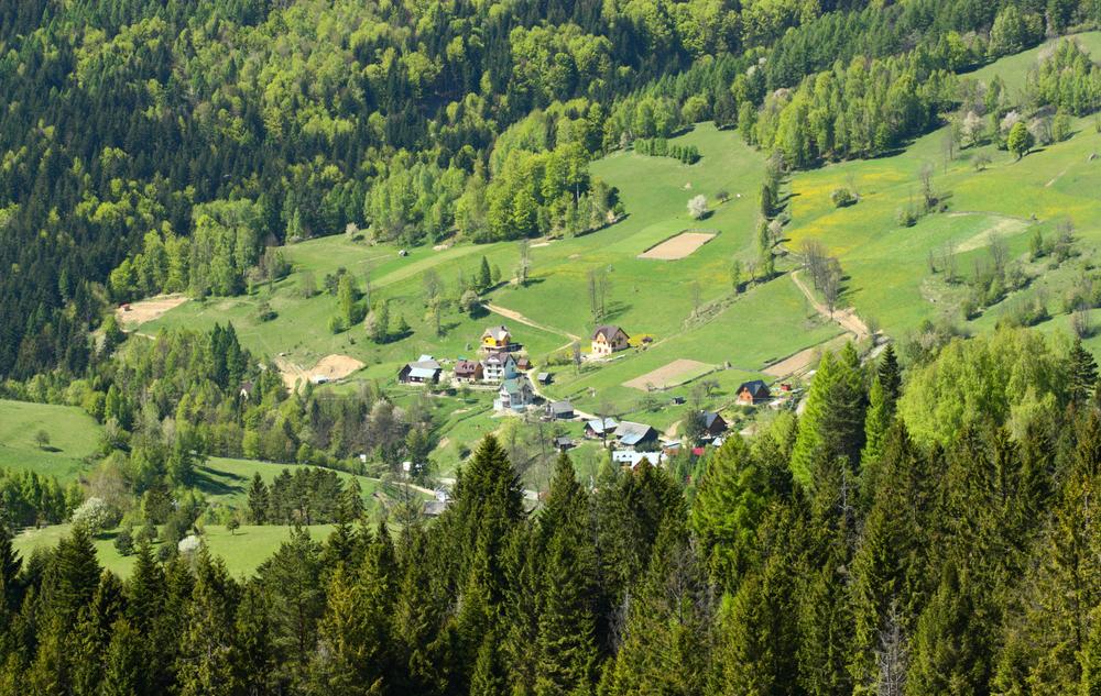 Widok na dolinę Wierchomli